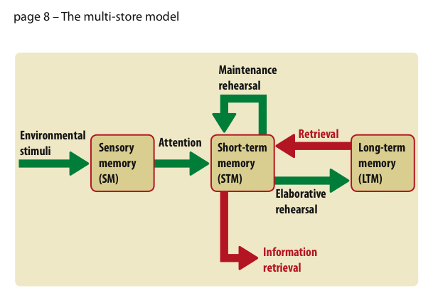 multistore recollection model