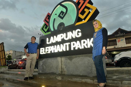 Lampung Elephant Park