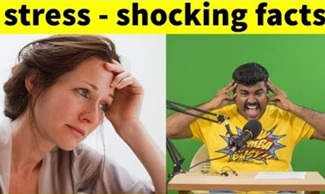 How to handle Stress|Shocking Video and Facts| Tamil motivation|Kichdy Explains