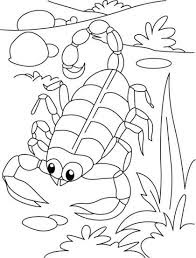 Cute Scorpion Coloring Pages On Yard