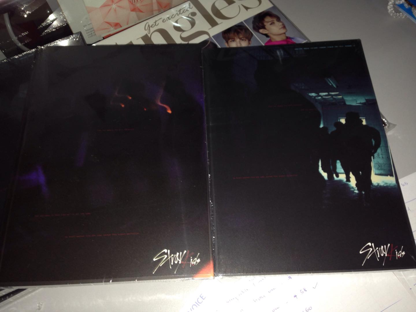SKY ZONE: Stray Kids K-pop Music CD, DVD & Official Goods