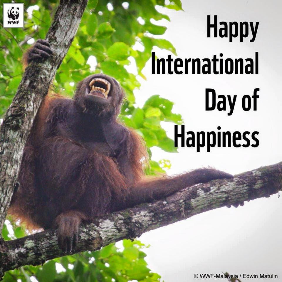 Happy International Day of Happiness! =)