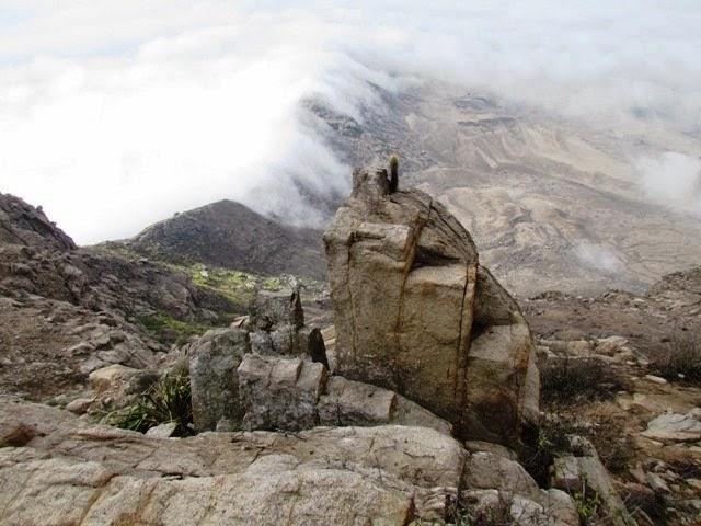 cerro campana leyenda