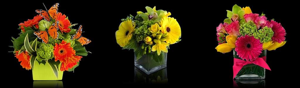 Bright Custom Floral Arrangements Just Because