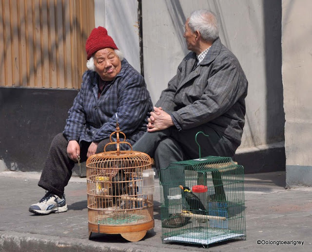 Birds and Seniors, Shanghai, China