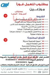 وظائف فى جريدة الوسيط الصعيد الجمعة 21/10/2016