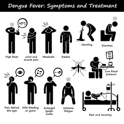 Dengue Fever Sri Lanka Symptoms Prevention and how to control