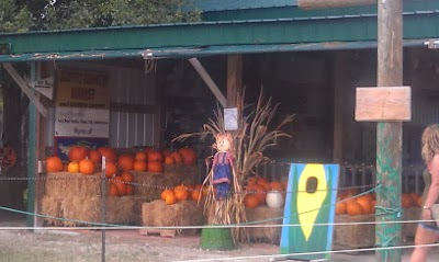 Eclectic Red Barn: Pumpkin Tent at the Long and Scott Farm
