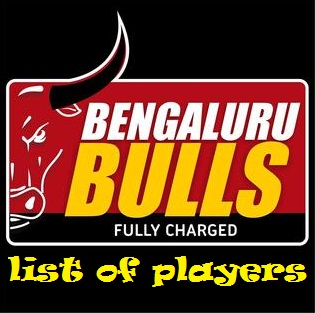 Bengluru Bulls Team, Team Logo