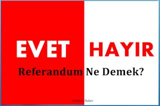 Referandum Nedir