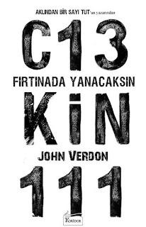 Fırtınada Yanacaksın - John Verdon