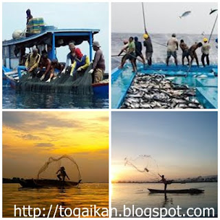 pengertian nelayan