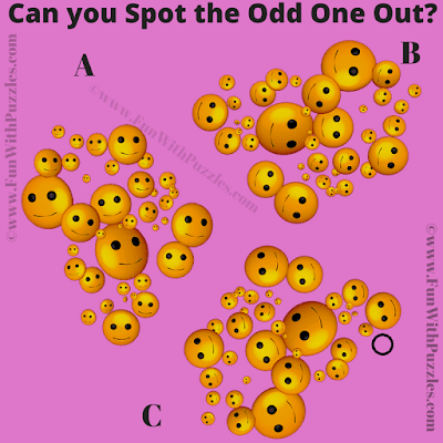 Answer of Observation Test Visual Brain Teaser