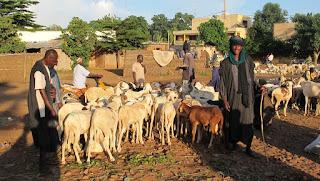 Afrique: Mali, la principale association peule parle de 37 morts après l'attaque de Koumaga