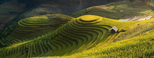 Highlights of The Trip Sapa & Mu Cang Chai Packages Tours 3