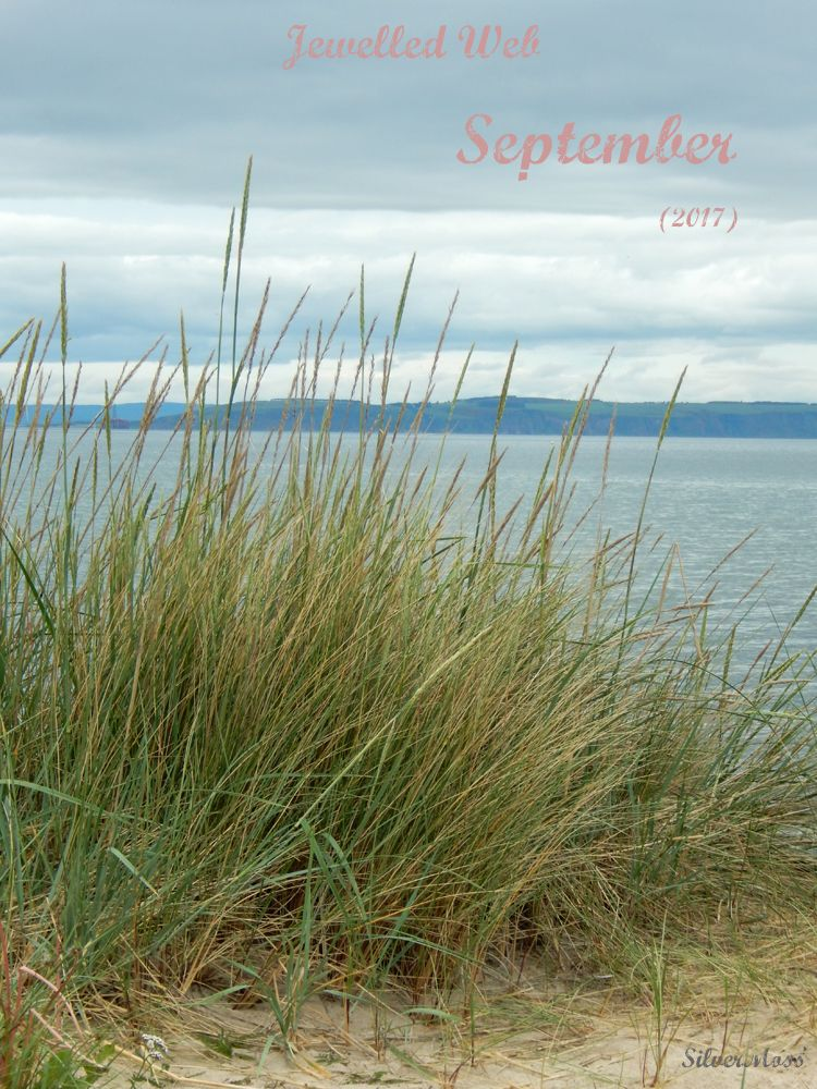 sand dunes by the sea - jewelled web September 2017 by SilverMoss jewellery