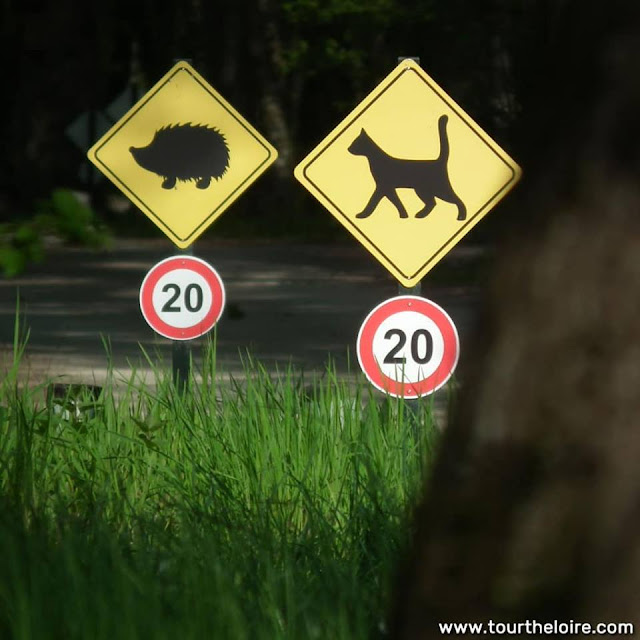 Animals crossing warning signs for motorists in the ground of the Chateau of Chenonceau. Indre et Loire. France. Photo by Loire Valley Time Travel.