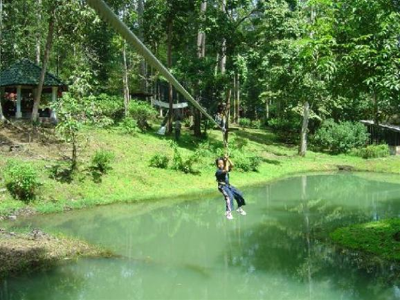 Skytrex Adventure Shah Alam little challenge