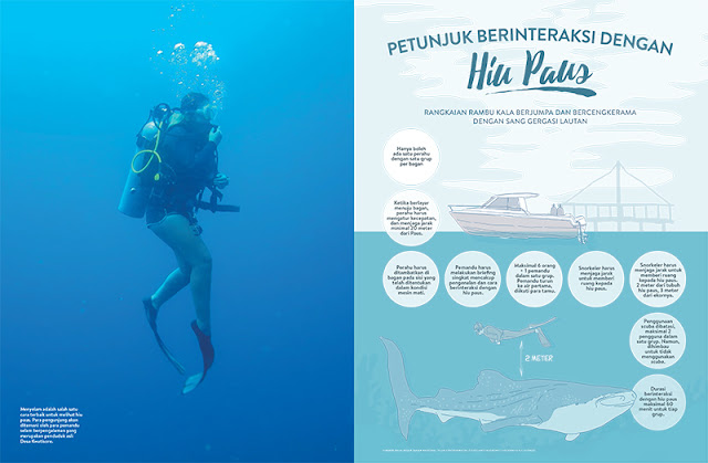 Teluk Cendrawasih, Teluk Cenderawasih, Kwatisore, Nabire, Kalilemon Dive Resort, Kalilemon, Taman Nasional Teluk Cendrawasih, Biak, Papua, Hiu Paus, Hiu, Bagan, Underwater, Foto Hiu Paus, Musim Hiu Paus, Gurano Bintang, Papua Barat, Ikan Paus, Bawah Laut, Foto Nabire, Foto Taman Nasional Cendrawasih, Foto Laut, Underwater Nabire, stock photo; culture stock photo; indonesia stock photo; indonesia photo; foto wisata; daerah wisata indonesia; tourism indonesia; amazing place indonesia; place to visit in indonesia; travel photographer; assignment for photographer; culture photo of indonesia