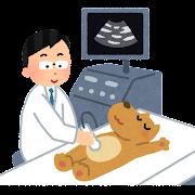 エコー検査のイラスト(犬)