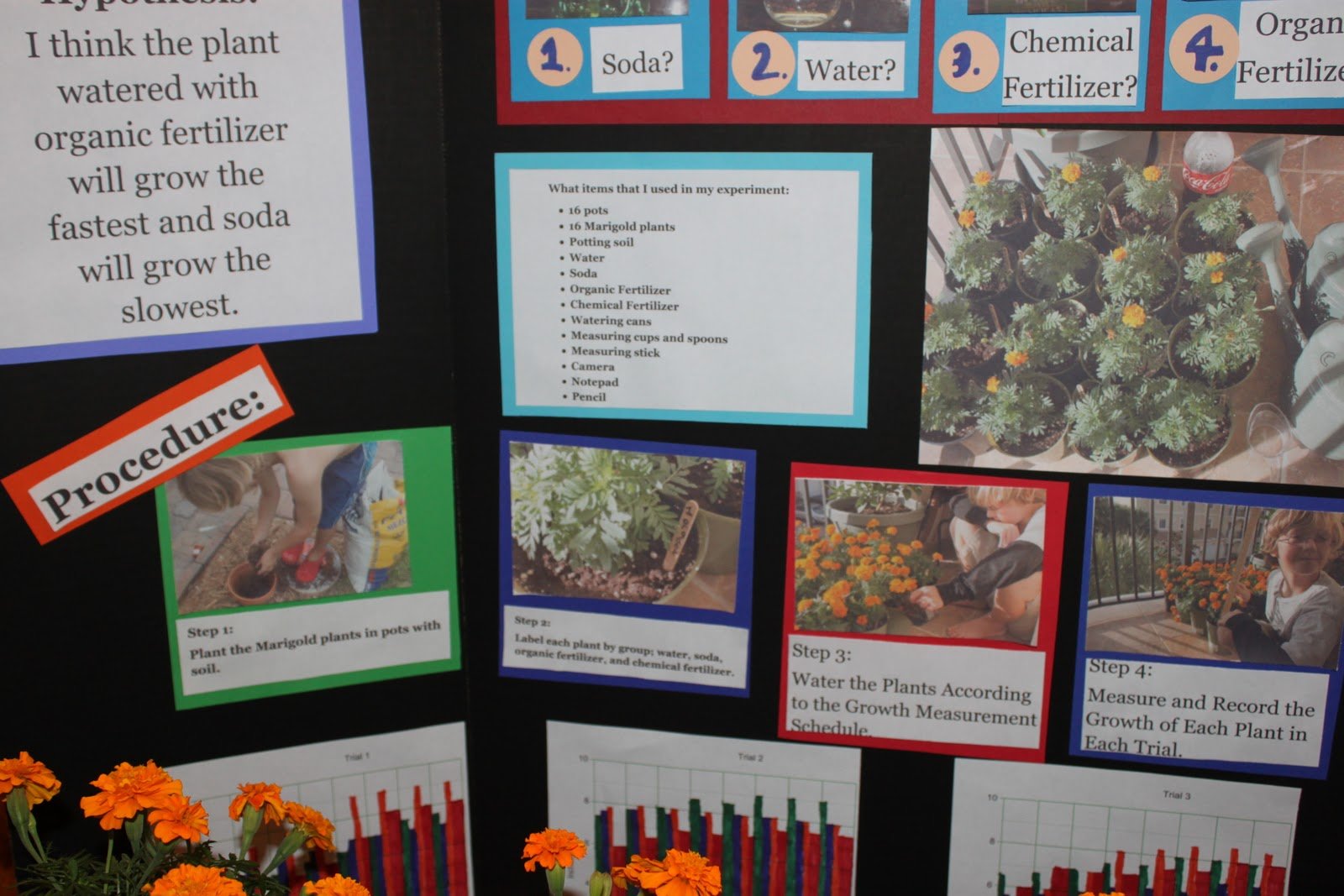 solar system science fair projects hypothesis pics about space plant science fair projects