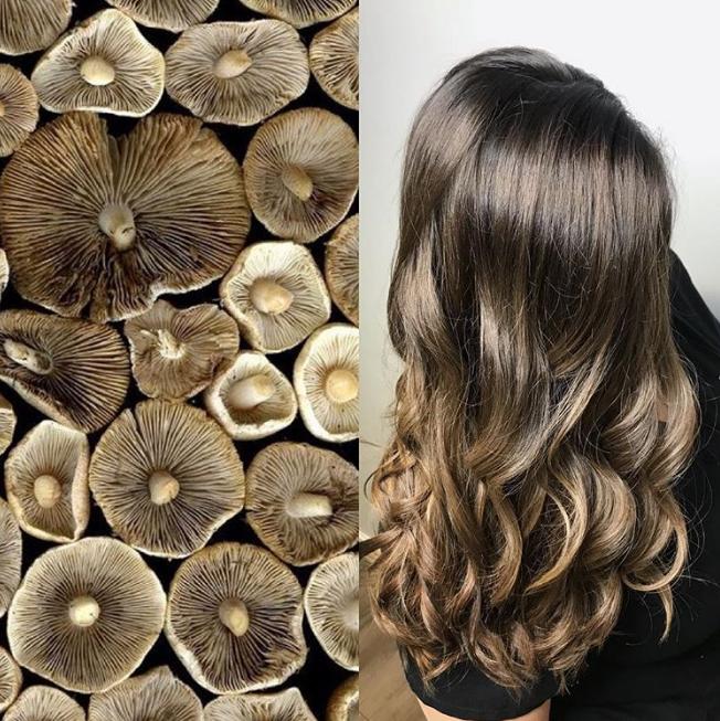 Make Life Easier Mushroom Brown Is The Hair Color Trend
