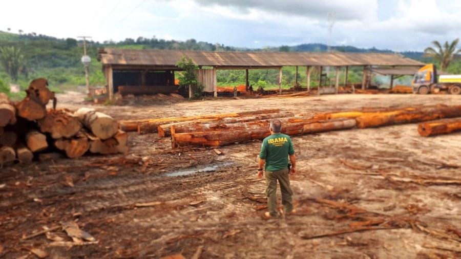 A ficha do madeireiro acusado de tentar matar servidores do Ibama em Placas
