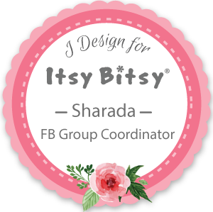 Facebook Group coordinator 2016-2017