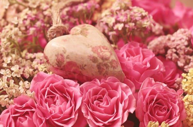 Mawar pink muda bisa jadi pertanda doi diam-diam suka sama kamu