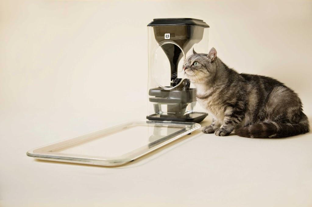 奇群科技貓臉辨識餵食器難產?宋牧奇:低估硬體開發的難度(內有聲明全文)|數位時代