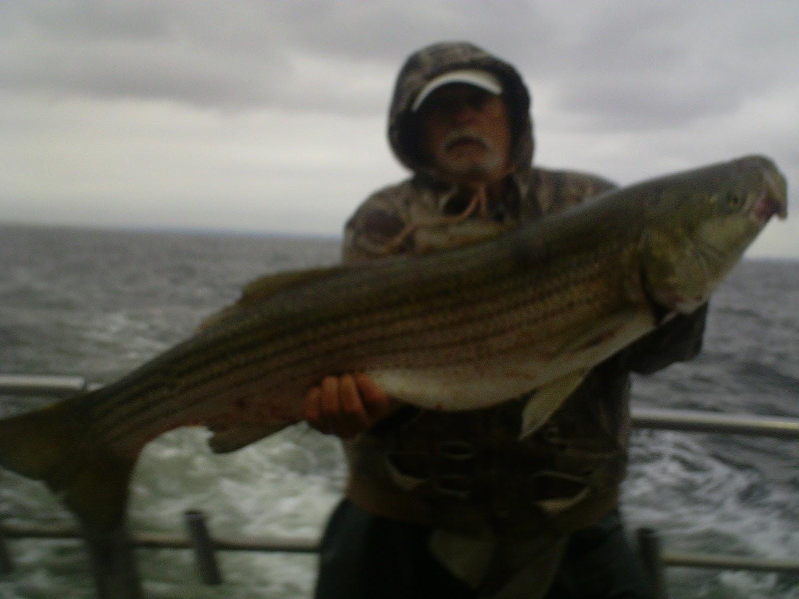 Nj salt fish 2017 06 06 seahunter atlantic highlands for Atlantic highlands fishing report