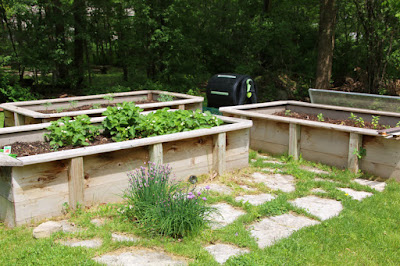 Raised Garden Beds or Traditional Garden Beds