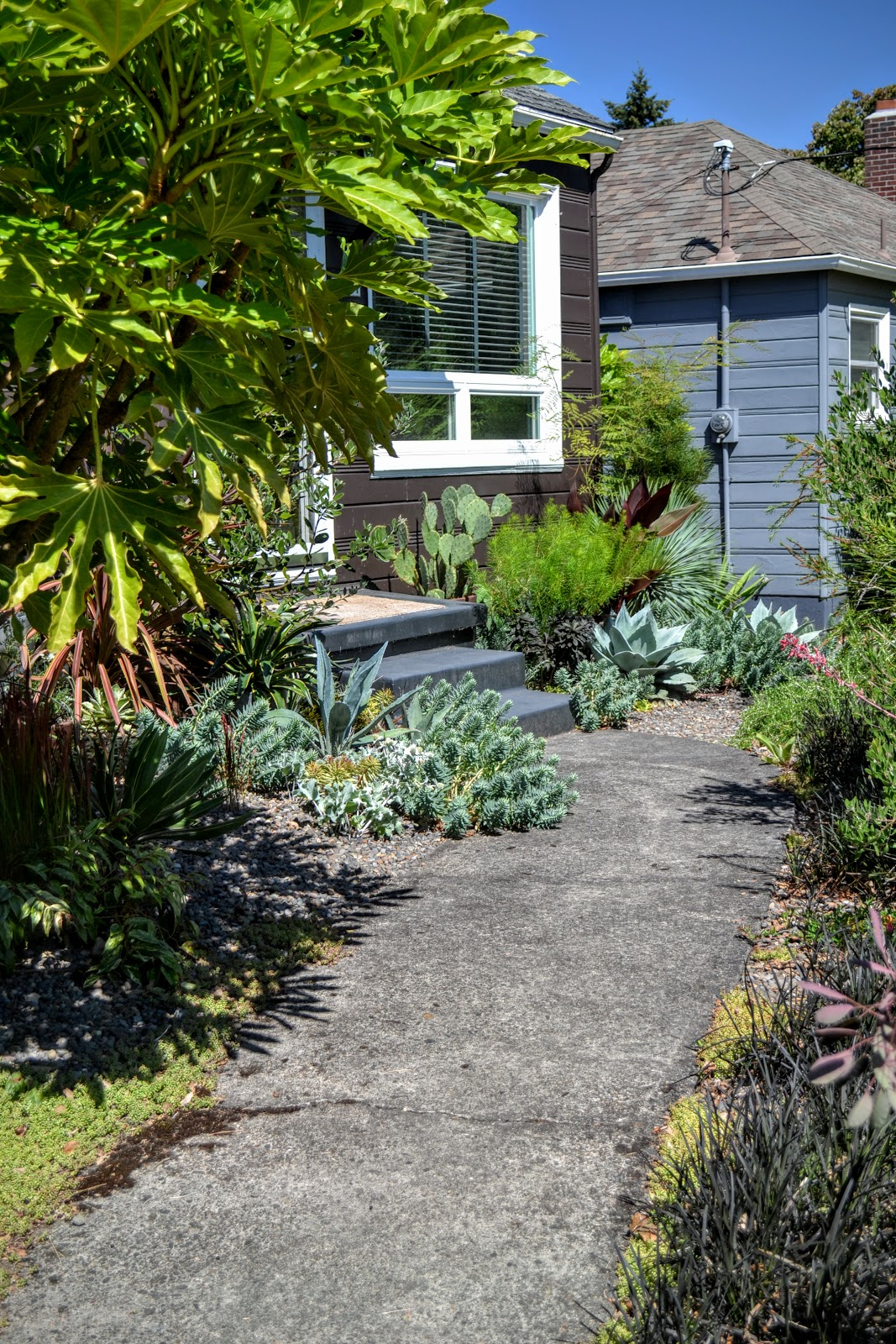 The Outlaw Gardener: What\'s Spiky, green, and Located in Portland?
