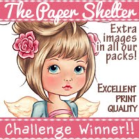 won another prize on the blog hop December 2018