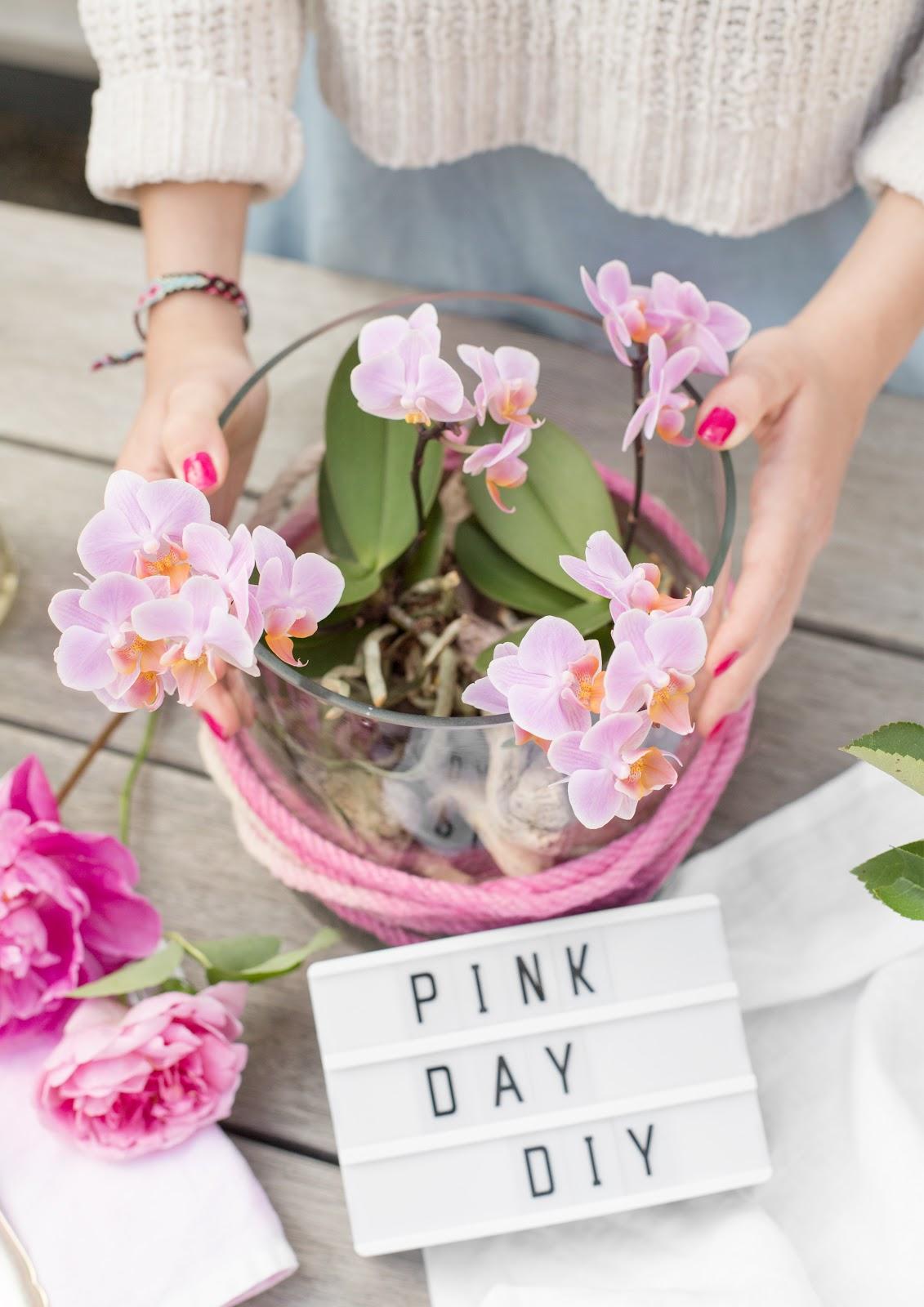 Pinke Orchideen - DIY