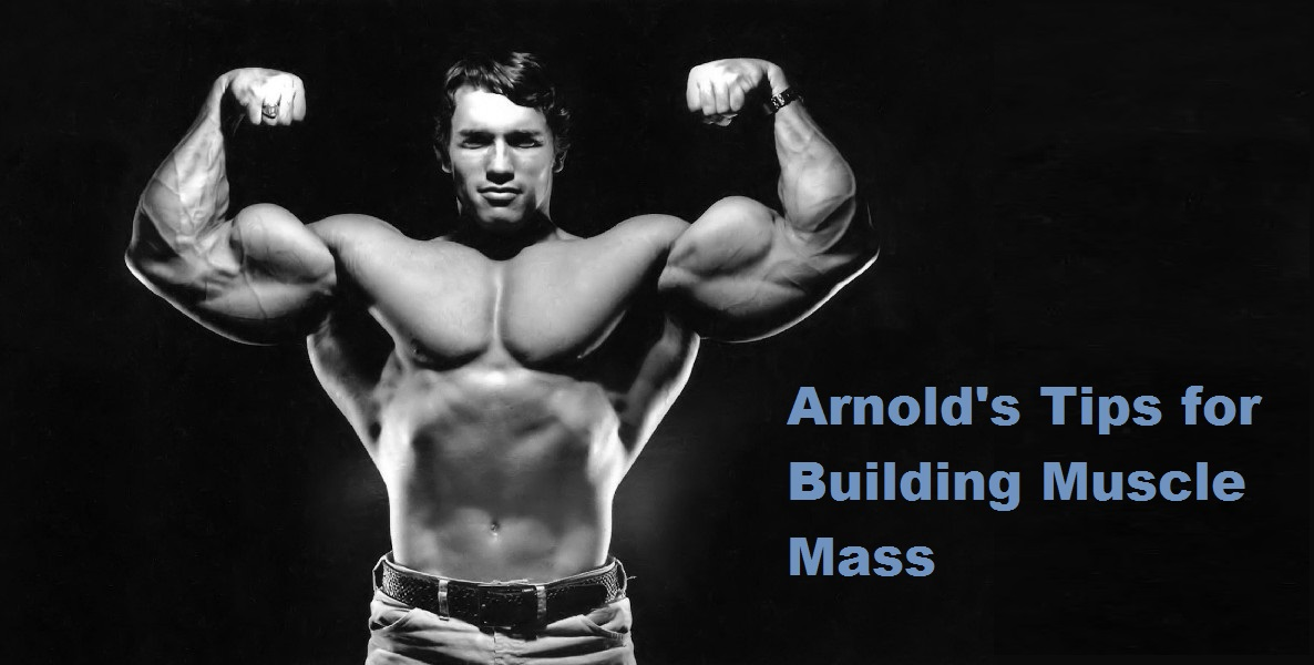 Muscle palace arnold schwarzenegger blueprint to mass arnold blueprint to mass malvernweather Image collections