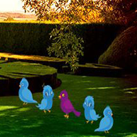 ZoooGames Jardin Trasero …