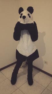 Disfraz oso panda completo