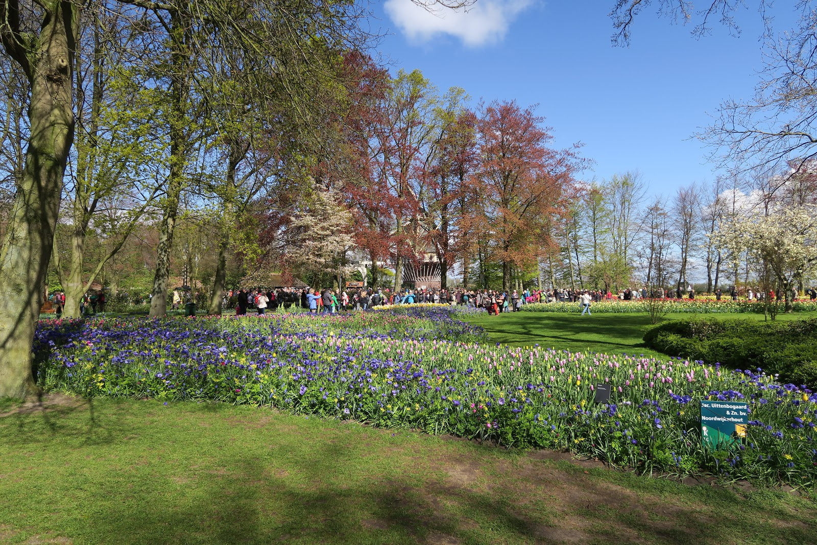 Pensionado: Lisse: Keukenhof 25-04-2016 6km