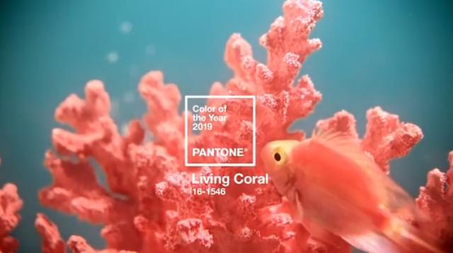 Living-Coral-color-del-año-2019-PANTONE