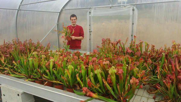 Alan Ripaud, des plantes carnivores aux premiers lauriers