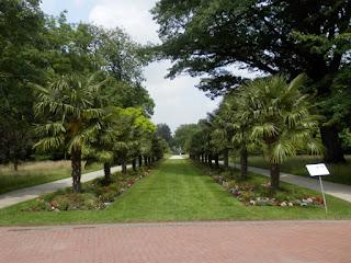 Botanischer Garten-Flora