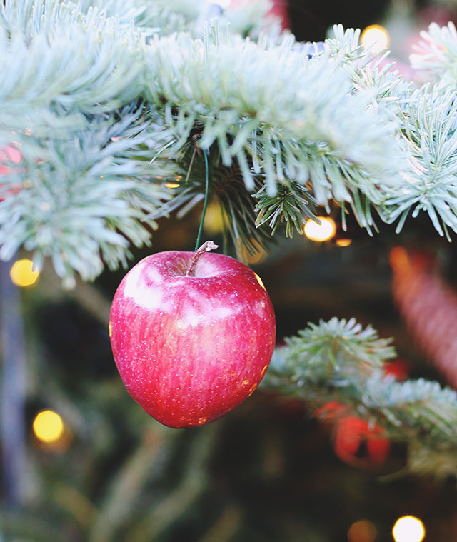 Apple Christmas Decoration