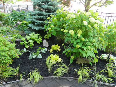 The Beach Front Garden Makeover After by Paul Jung Gardening Services--a Toronto Gardening Company