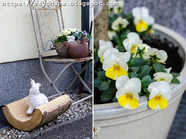 Blumentopf mit Frühlingspflanzen