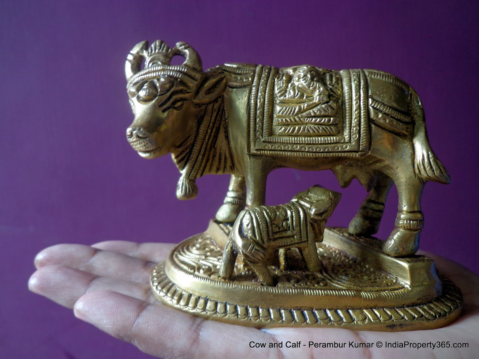 Importance of Keeping Cow and Calf Idol at Home - Vastu for Home