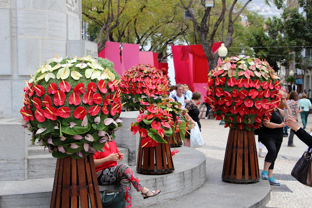 the Flower Festival shines on city