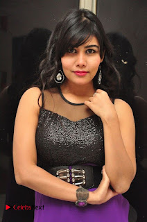 Telugu Actress Rachana Smith Stills at Money is Honey Audio Release  0004.jpg