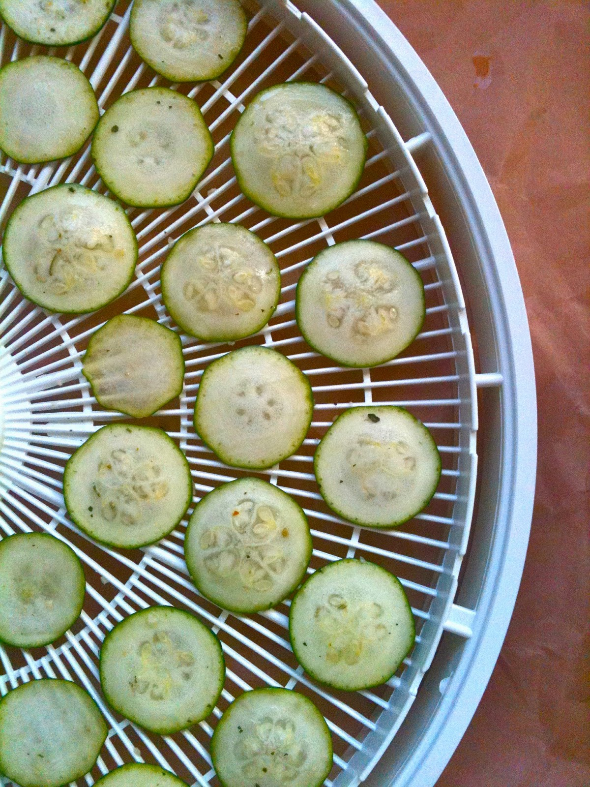 Passionately raw how to dehydrate food without a dehydrator dehydrating zucchini forumfinder Images