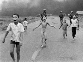 THE TERROR OF WAR. GUERRA DE VIETNAM O SEGUNDA GUERRA DE INDOCHINA (1/11/1955-30/4/1975).